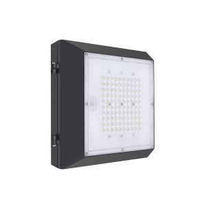 40W LED Canopy Light Garage Light High Output Gas Station Light IP65 140lm/w (6CP Series)