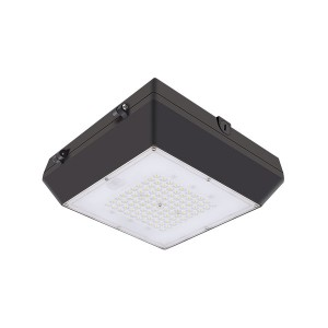 80W LED Garage Light Fixtures LED Canopy Light Waterproof Outdoor Ceiling Lights (6CP Series)